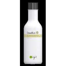 Camellia Oil-Control Shampoo